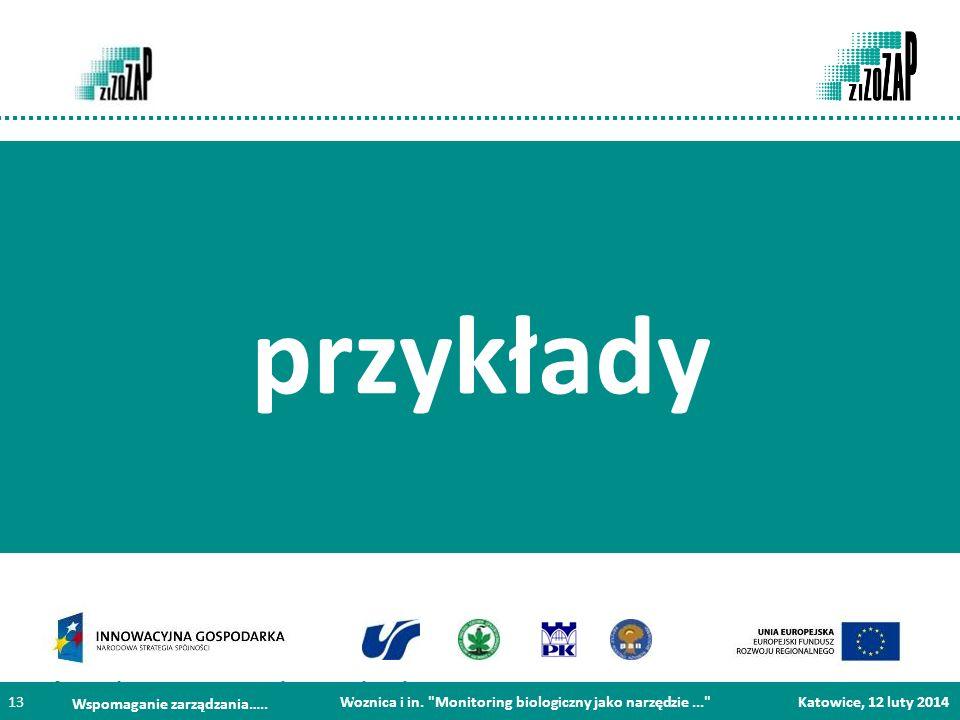 Projekt współfinansowany ze środków Europejskiego Funduszu Rozwoju Regionalnego w ramach Programu Operacyjnego Innowacyjna Gospodarka Woznica i in.