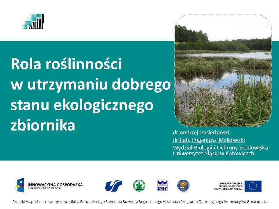 Projekt współfinansowany ze środków Europejskiego Funduszu Rozwoju Regionalnego w ramach Programu Operacyjnego Innowacyjna Gospodarka Rola roślinności