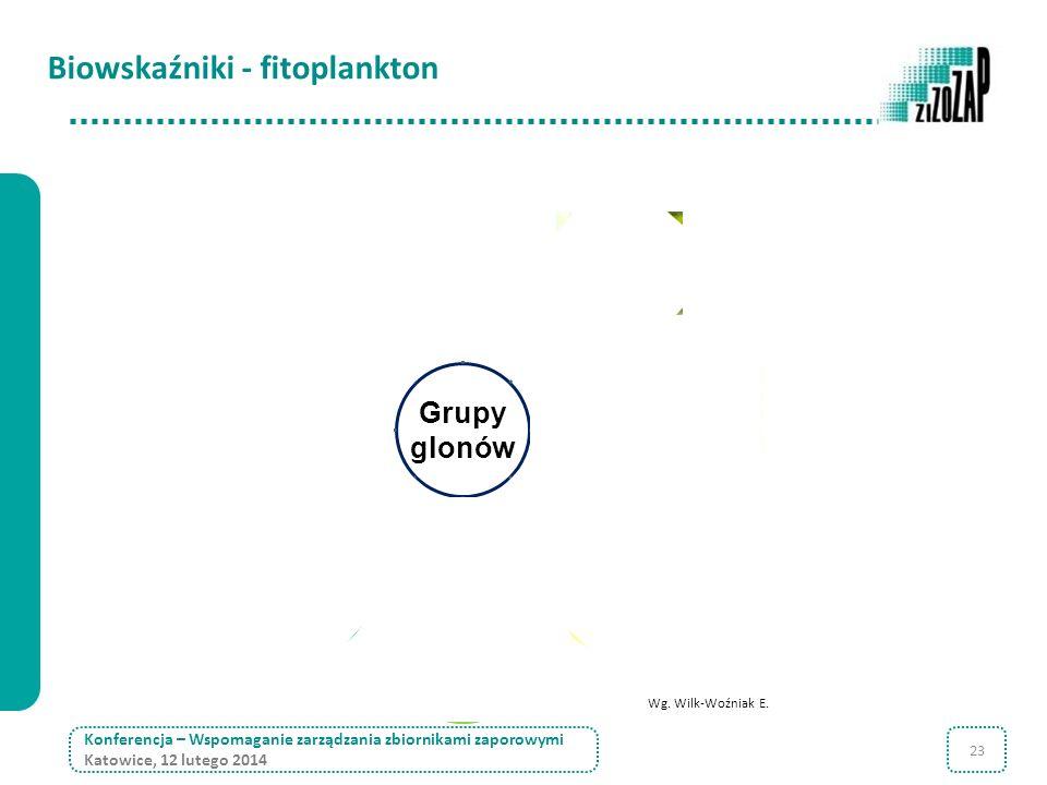 23 Konferencja – Wspomaganie zarządzania zbiornikami zaporowymi Katowice, 12 lutego 2014 Wg. Wilk-Woźniak E. Grupy glonówsinicezielenice bruzdnice eug