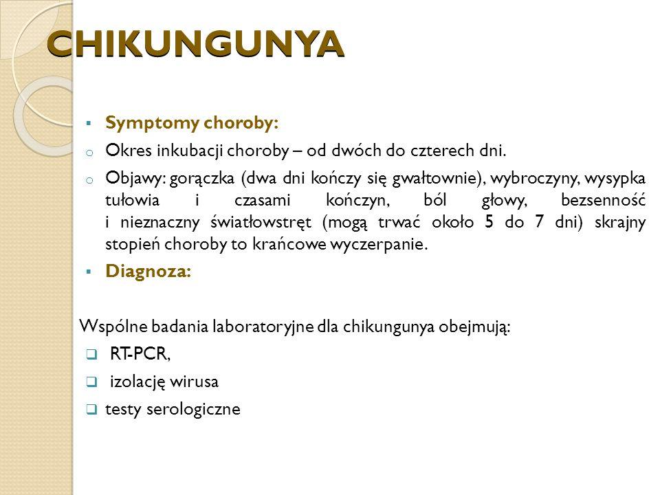 CHIKUNGUNYA Symptomy choroby: o Okres inkubacji choroby – od dwóch do czterech dni.