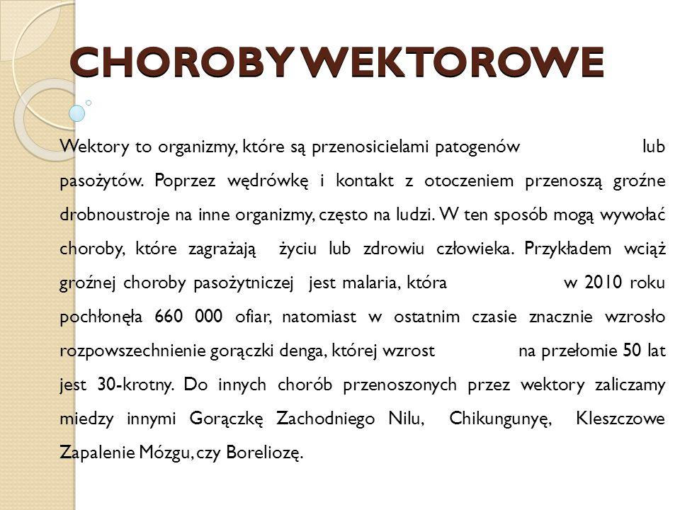 CHOROBY WEKTOROWE Wektory to organizmy, które są przenosicielami patogenów lub pasożytów.