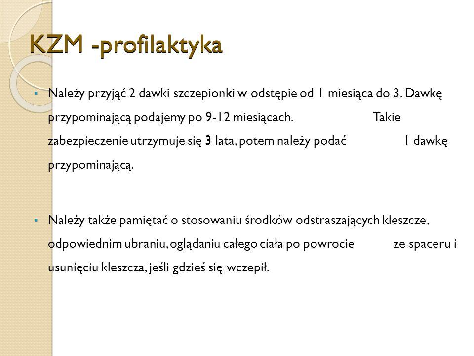 KZM -profilaktyka Należy przyjąć 2 dawki szczepionki w odstępie od 1 miesiąca do 3.