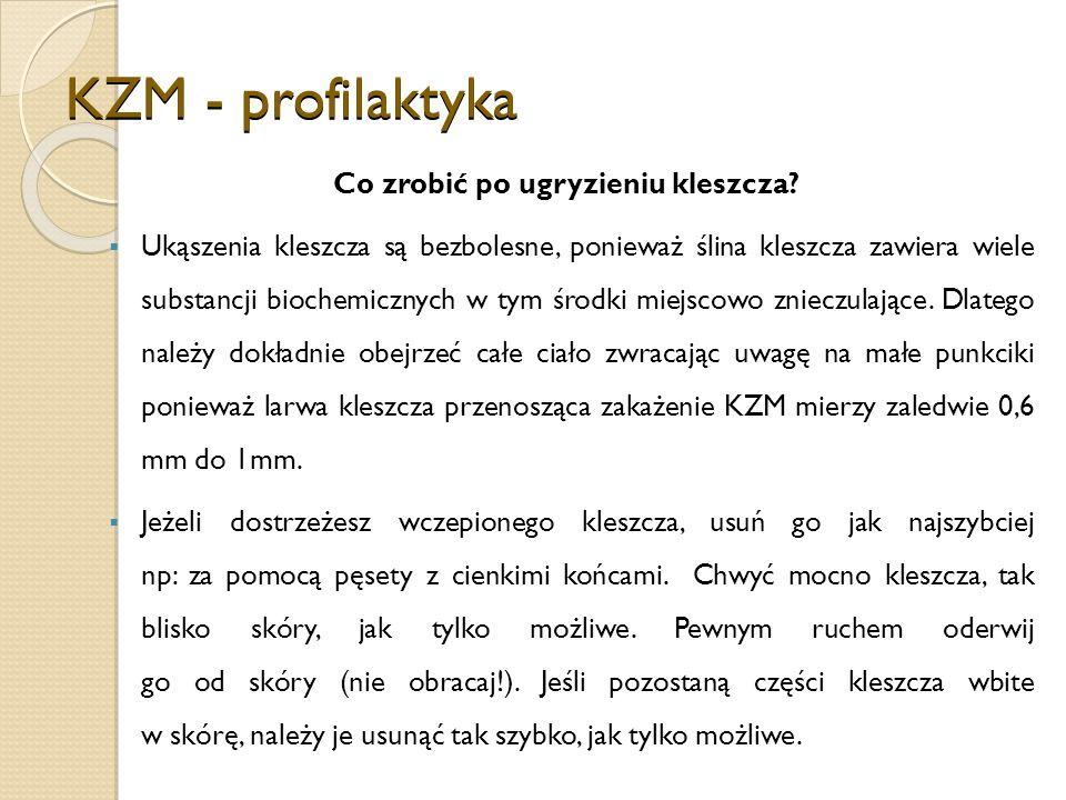 KZM - profilaktyka Co zrobić po ugryzieniu kleszcza.
