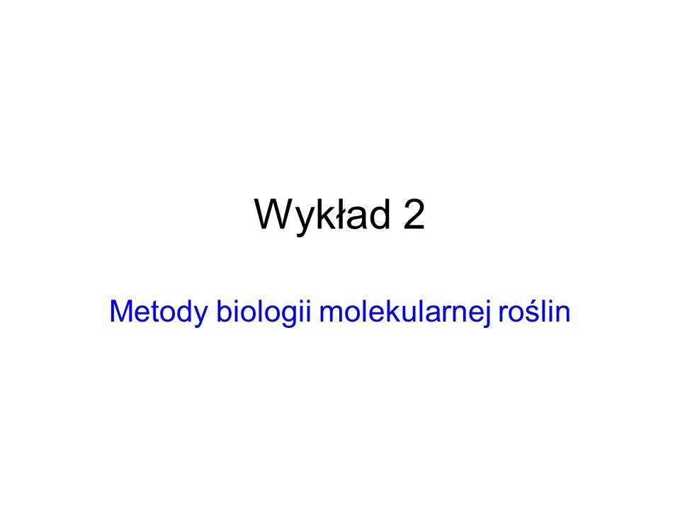 Podstawowe techniki biologii molekularnej stosowane w badaniach roślin Klonowanie; Biblioteki genowe; Banki; Bazy danych; Analiza makrocząsteczek/ elektroforeza; PCR; Sondy: Southern-, Northern-, Western-blotting, Immunodetekcja; Hybrydyzacja in situ; FISH; Transkrypcja/translacja in vitro; Ekspresja cDNA; Badania białek, Chromatografia powinowactwa; System dwuhybrydowy; Bioinformatyka