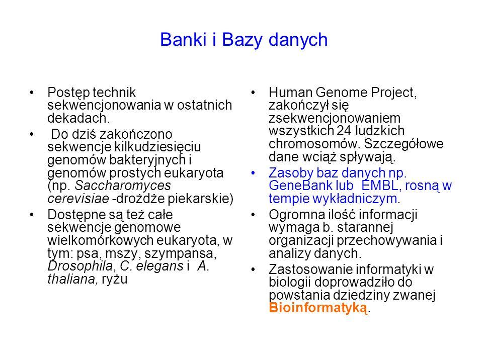 Banki i Bazy danych Postęp technik sekwencjonowania w ostatnich dekadach. Do dziś zakończono sekwencje kilkudziesięciu genomów bakteryjnych i genomów