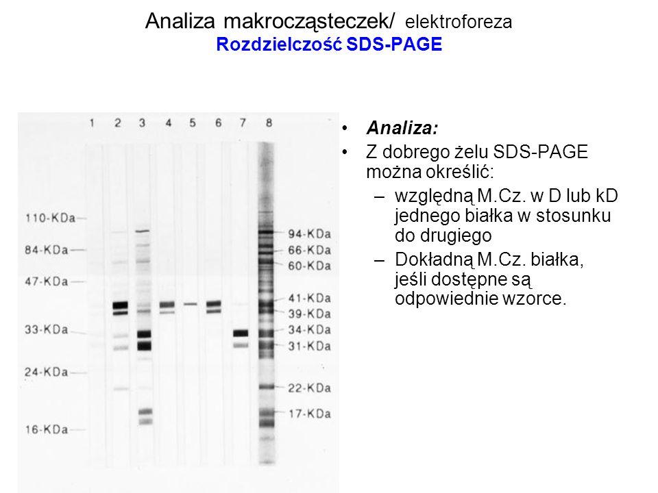 Analiza makrocząsteczek/ elektroforeza Rozdzielczość SDS-PAGE Analiza: Z dobrego żelu SDS-PAGE można określić: –względną M.Cz. w D lub kD jednego biał