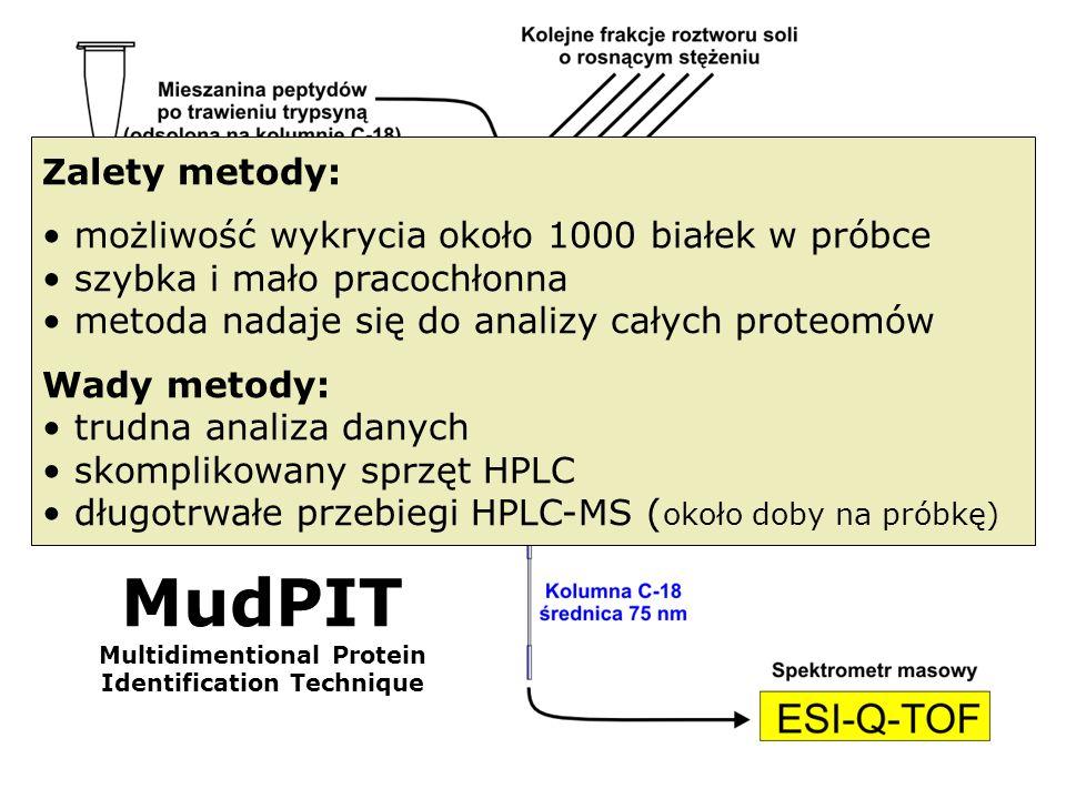 MudPIT Multidimentional Protein Identification Technique Zalety metody: możliwość wykrycia około 1000 białek w próbce szybka i mało pracochłonna metod