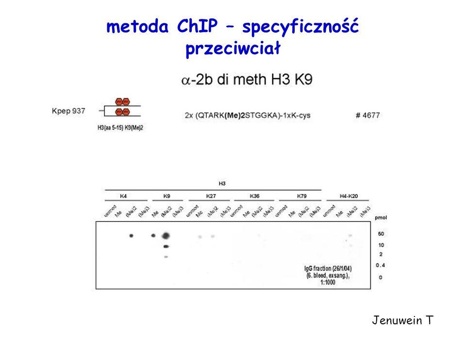 Jenuwein T metoda ChIP – specyficzność przeciwciał