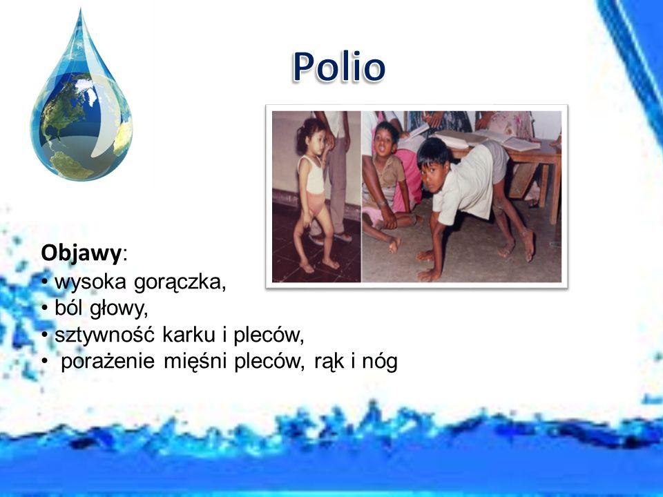 Malaria zwana też zimnicą wywołana jest przez jednokomórkowego pierwotniaka zwanego zarodźcem malarycznym.