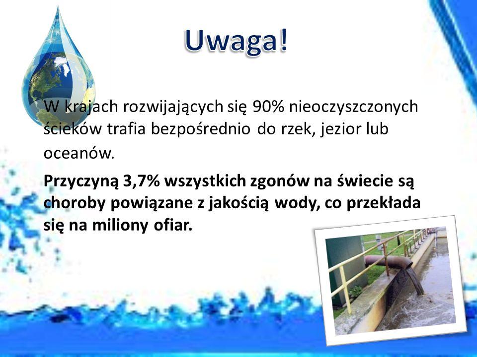 Choroby przenoszone drogą wodną wywołane są przez: bakterie, wirusy, pierwotniaki, robaki pasożytnicze.