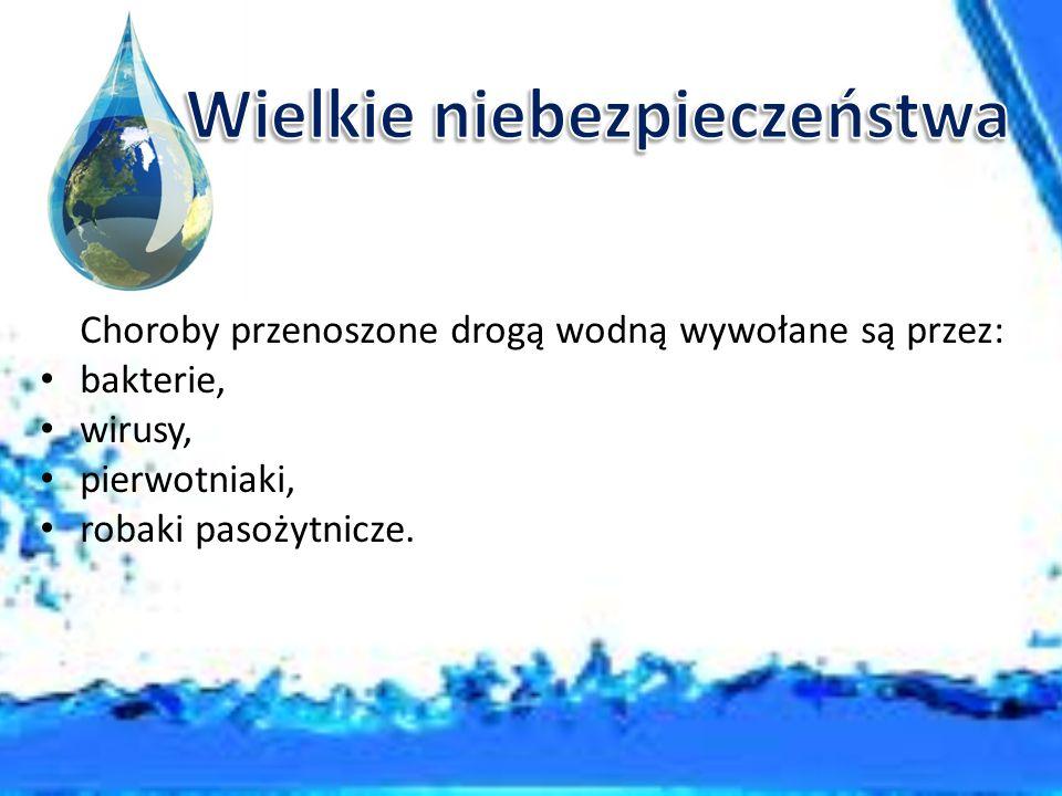 Dur brzuszny - ostra choroba zakaźna wywoływana przez bakterię pałeczkę duru brzusznego.