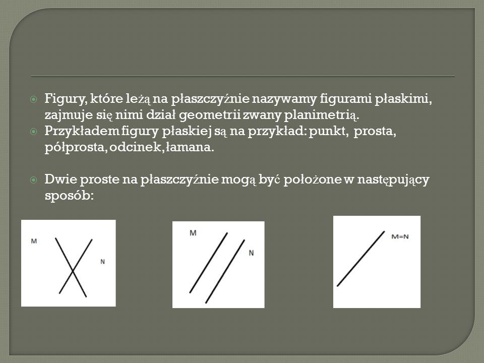 Figury, które le żą na p ł aszczy ź nie nazywamy figurami p ł askimi, zajmuje si ę nimi dzia ł geometrii zwany planimetri ą. Przyk ł adem figury p ł a