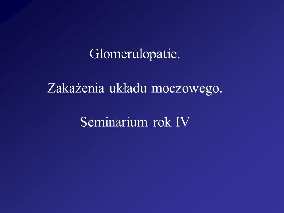 K Z N najczęściej podłoże immunologiczne pierwotnie zmiany dotyczą samych kłębuszków(zmiany morfologiczne i czynnościowe) wtórne zmiany cewkowo-śródmiąższowe