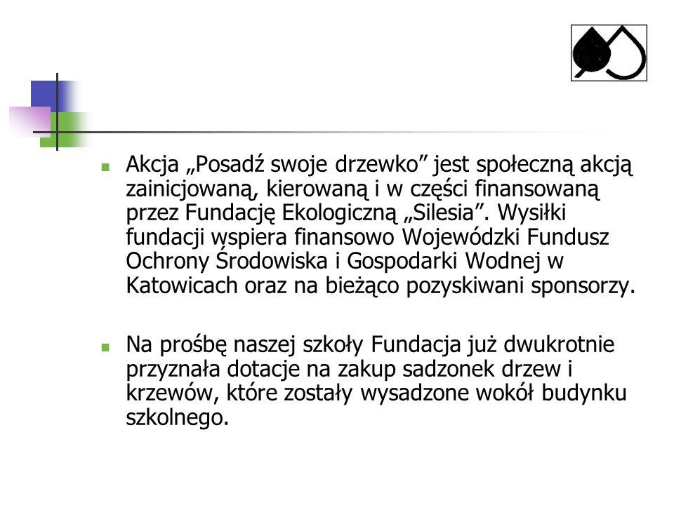 Akcja Posadź swoje drzewko jest społeczną akcją zainicjowaną, kierowaną i w części finansowaną przez Fundację Ekologiczną Silesia. Wysiłki fundacji ws