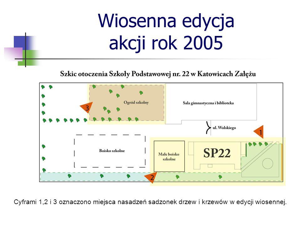 Fragment otoczenia szkoły od strony północnej (1)