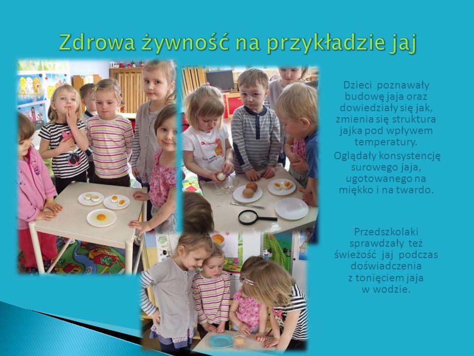 Dzieci poznawały budowę jaja oraz dowiedziały się jak, zmienia się struktura jajka pod wpływem temperatury.