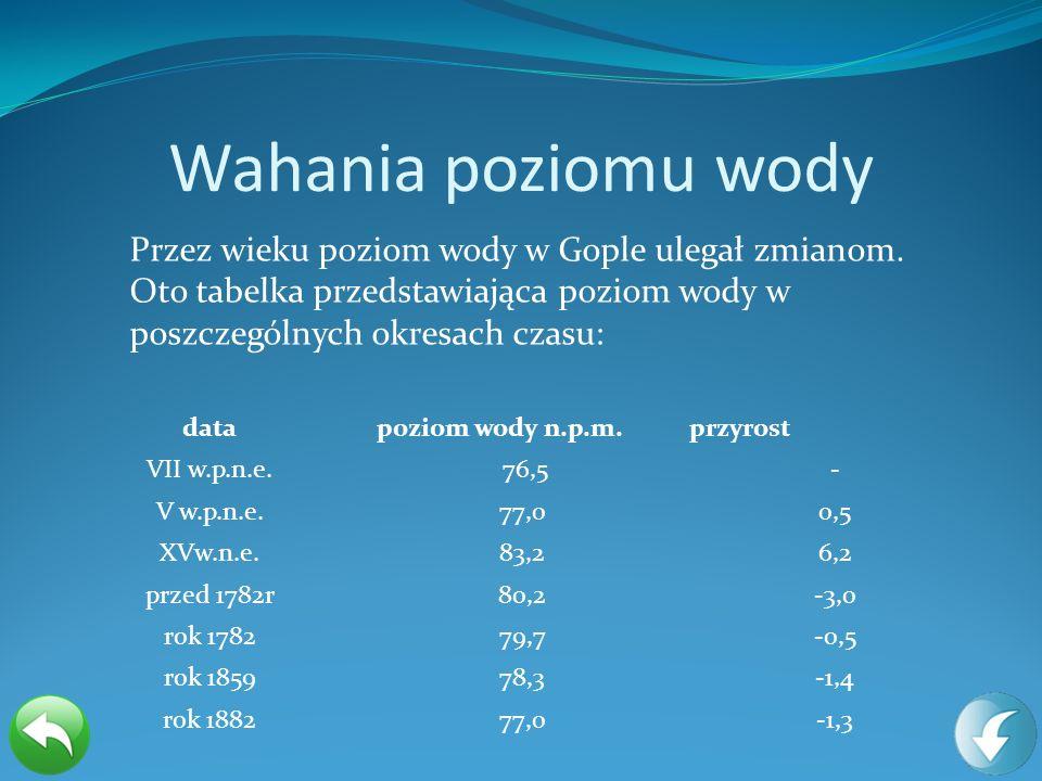 Wahania poziomu wody datapoziom wody n.p.m.przyrost VII w.p.n.e. 76,5- V w.p.n.e.77,00,5 XVw.n.e.83,26,2 przed 1782r80,2-3,0 rok 178279,7-0,5 rok 1859