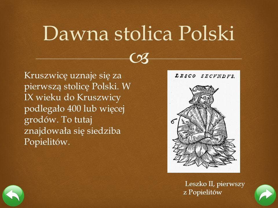 Kruszwicę uznaje się za pierwszą stolicę Polski. W IX wieku do Kruszwicy podlegało 400 lub więcej grodów. To tutaj znajdowała się siedziba Popielitów.