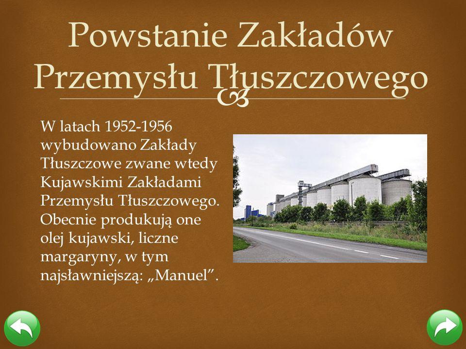 W latach 1952-1956 wybudowano Zakłady Tłuszczowe zwane wtedy Kujawskimi Zakładami Przemysłu Tłuszczowego. Obecnie produkują one olej kujawski, liczne