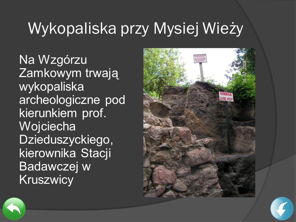Wykopaliska przy Mysiej Wieży Na Wzgórzu Zamkowym trwają wykopaliska archeologiczne pod kierunkiem prof. Wojciecha Dzieduszyckiego, kierownika Stacji