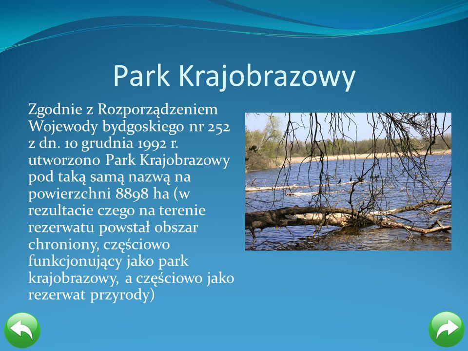 Park Krajobrazowy Zgodnie z Rozporządzeniem Wojewody bydgoskiego nr 252 z dn. 10 grudnia 1992 r. utworzono Park Krajobrazowy pod taką samą nazwą na po