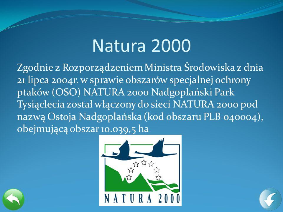 Natura 2000 Zgodnie z Rozporządzeniem Ministra Środowiska z dnia 21 lipca 2004r. w sprawie obszarów specjalnej ochrony ptaków (OSO) NATURA 2000 Nadgop