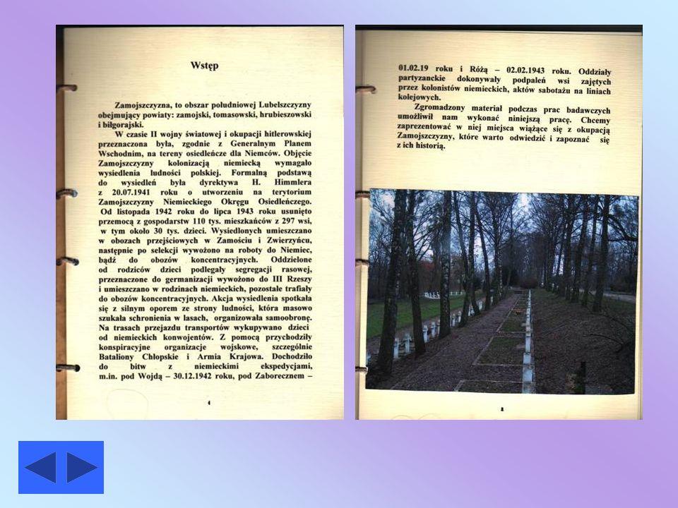 Przewodnik historyczny Przewodnik historyczny Strona główna