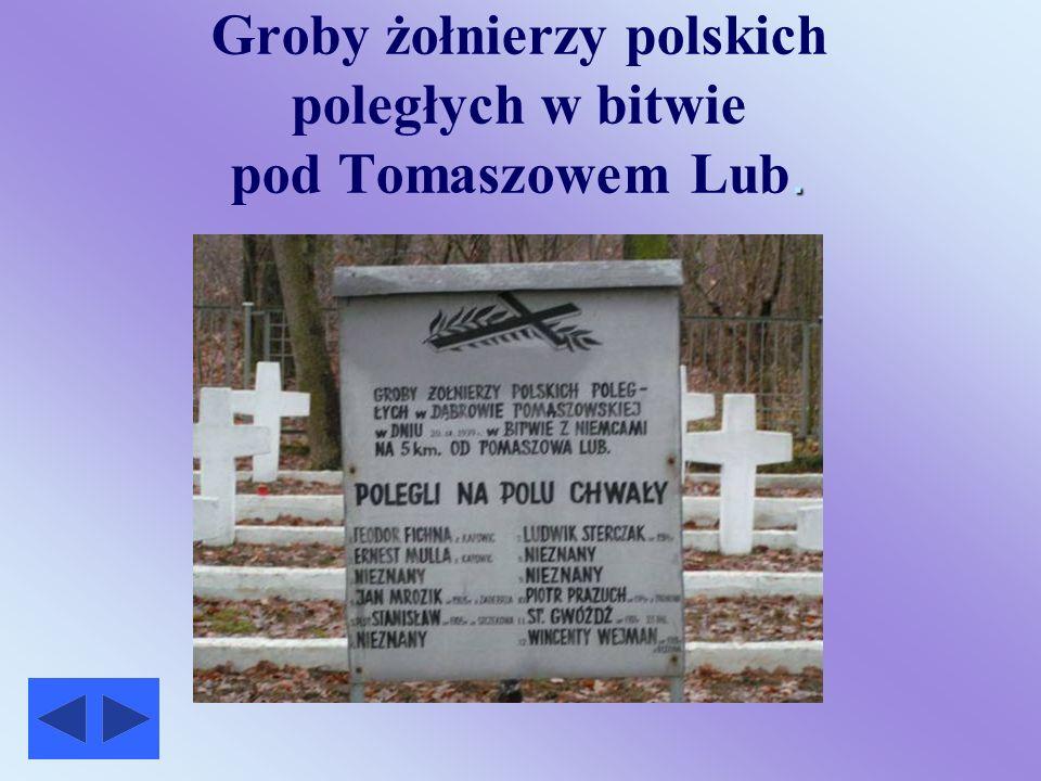 Bitwa pod Tomaszowem W dniu 17 września rozpoczęła się bitwa pod Tomaszowem Lub.- jedna z największych w czasie wojny obronnej 1939r. Dowództwo nad ca