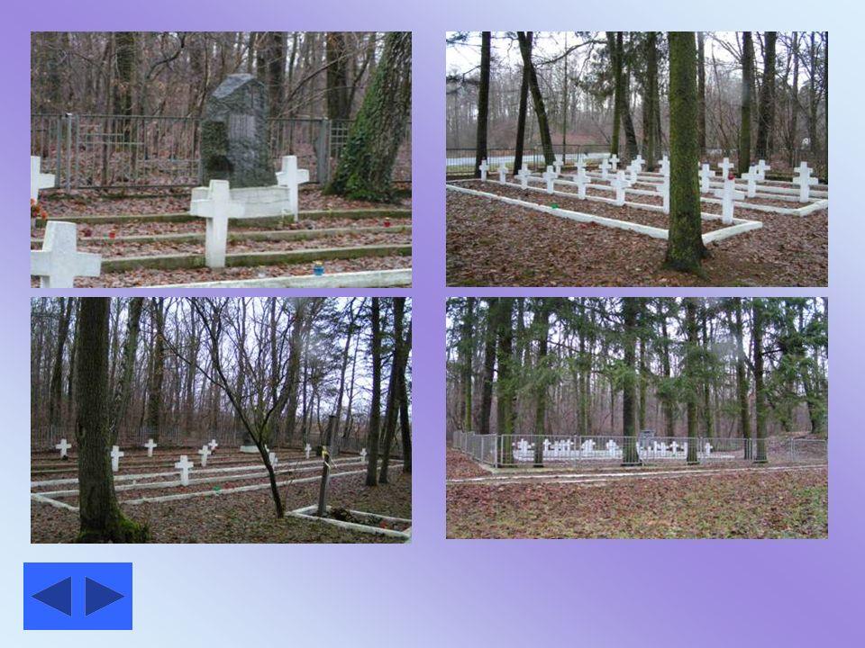 . Groby żołnierzy polskich poległych w bitwie pod Tomaszowem Lub.