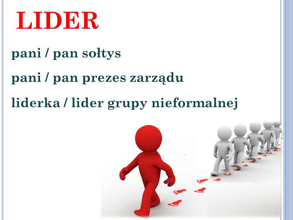 GRUPA rada sołecka, mieszkańcy sołectwa członkowie zarządu, członkowie stowarzyszenia członkowie grupy nieformalnej