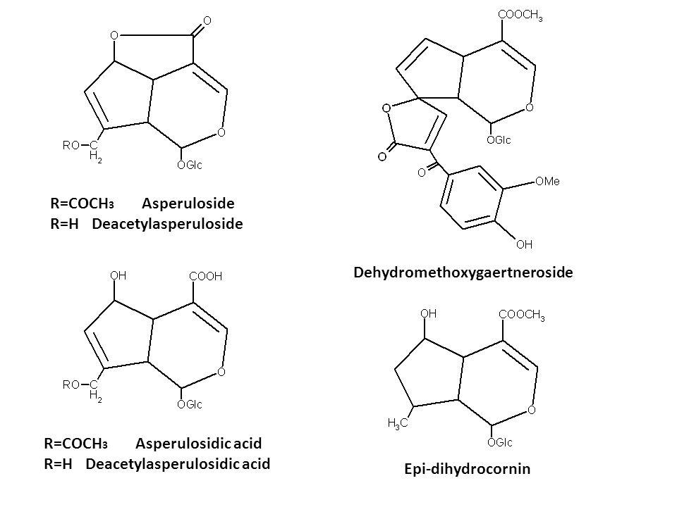 R=COCH 3 Asperuloside R=H Deacetylasperuloside R=COCH 3 Asperulosidic acid R=H Deacetylasperulosidic acid Dehydromethoxygaertneroside Epi-dihydrocorni