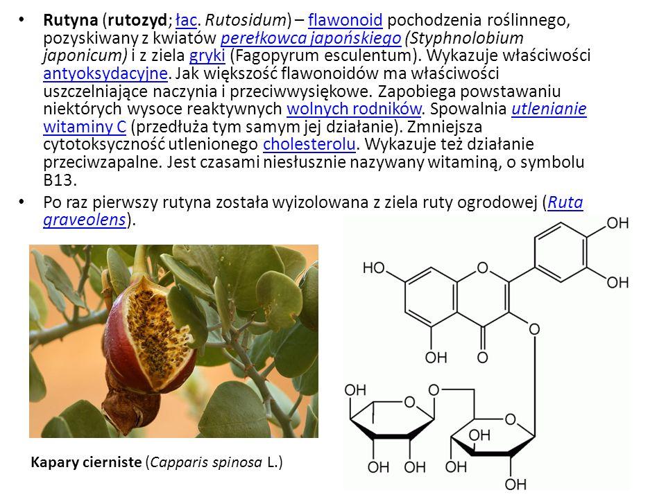 Rutyna (rutozyd; łac. Rutosidum) – flawonoid pochodzenia roślinnego, pozyskiwany z kwiatów perełkowca japońskiego (Styphnolobium japonicum) i z ziela