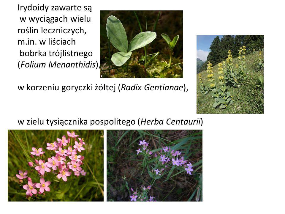 Irydoidy zawarte są w wyciągach wielu roślin leczniczych, m.in. w liściach bobrka trójlistnego (Folium Menanthidis), w korzeniu goryczki żółtej (Radix