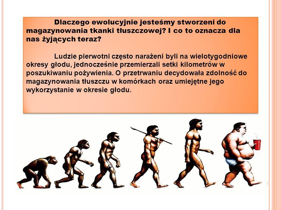 Dlaczego ewolucyjnie jesteśmy stworzeni do magazynowania tkanki tłuszczowej.