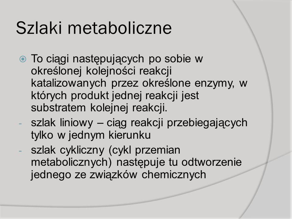 Szlaki metaboliczne To ciągi następujących po sobie w określonej kolejności reakcji katalizowanych przez określone enzymy, w których produkt jednej reakcji jest substratem kolejnej reakcji.