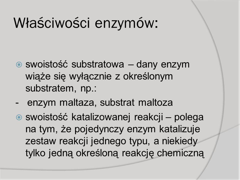 Właściwości enzymów: swoistość substratowa – dany enzym wiąże się wyłącznie z określonym substratem, np.: - enzym maltaza, substrat maltoza swoistość katalizowanej reakcji – polega na tym, że pojedynczy enzym katalizuje zestaw reakcji jednego typu, a niekiedy tylko jedną określoną reakcję chemiczną