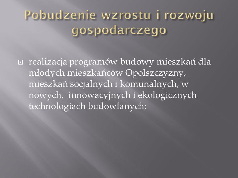 realizacja programów budowy mieszkań dla młodych mieszkańców Opolszczyzny, mieszkań socjalnych i komunalnych, w nowych, innowacyjnych i ekologicznych technologiach budowlanych;