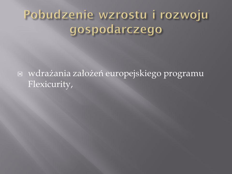 wdrażania założeń europejskiego programu Flexicurity,