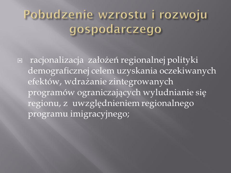 inwestycje samorządowe, z wykorzystaniem środków europejskich, w celu tworzenia nowych, innowacyjnych miejsc pracy;
