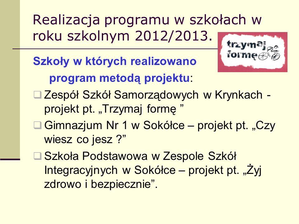 Realizacja programu w szkołach w roku szkolnym 2012/2013. Szkoły w których realizowano program metodą projektu: Zespół Szkół Samorządowych w Krynkach