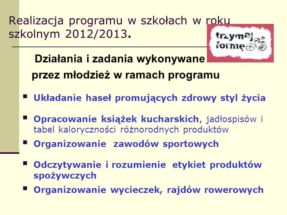 Realizacja programu w szkołach w roku szkolnym 2012/2013. Działania i zadania wykonywane przez młodzież w ramach programu Układanie haseł promujących