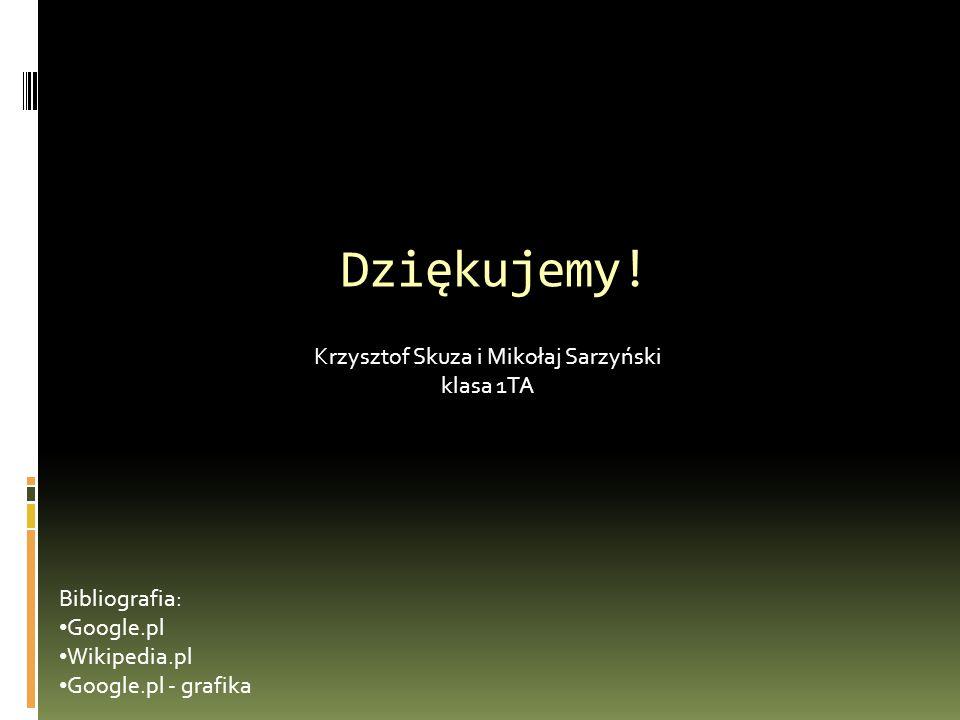 Dziękujemy! Krzysztof Skuza i Mikołaj Sarzyński klasa 1TA Bibliografia: Google.pl Wikipedia.pl Google.pl - grafika