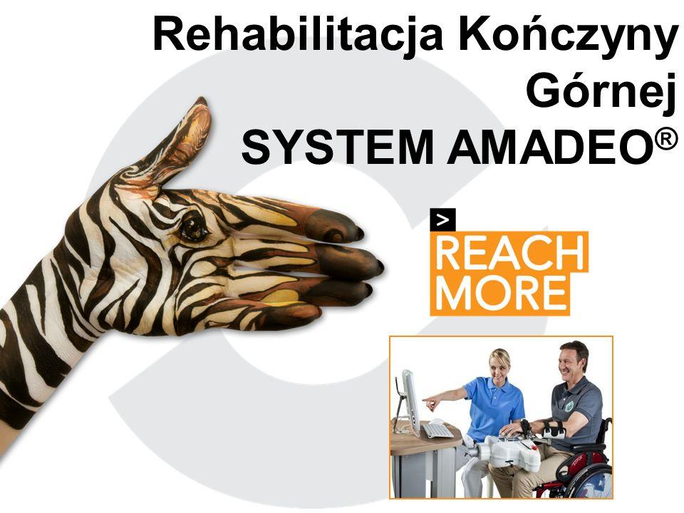 Titelmasterformat Rehabilitacja Kończyny Górnej SYSTEM AMADEO ®
