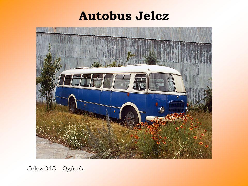 Autobus Jelcz Jelcz 043 - Ogórek
