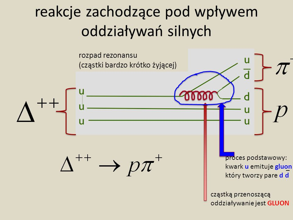 reakcje zachodzące pod wpływem oddziaływań silnych rozpad rezonansu (cząstki bardzo krótko żyjącej) cząstką przenoszącą oddziaływanie jest GLUON proces podstawowy: kwark u emituje gluon który tworzy pare d d _