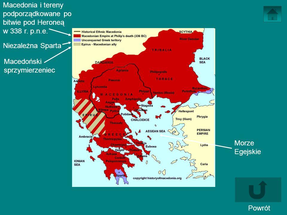 Powrót Macedonia i tereny podporządkowane po bitwie pod Heroneą w 338 r. p.n.e. Niezależna Sparta Macedoński sprzymierzeniec Morze Egejskie