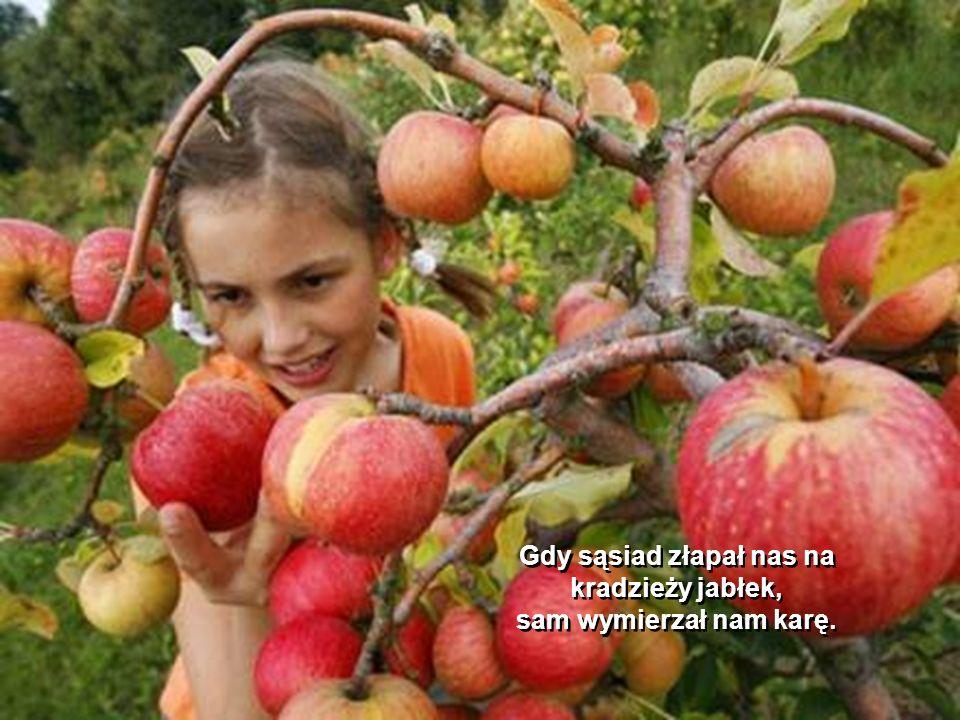 Do lasu szliśmy, gdy mieliśmy na to ochotę. Jedliśmy jagody, na które wcześniej nasikały lisy i sarny. Mama nie bała się ze zje nas wilk, zarazimy się
