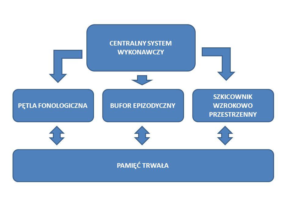 CENTRALNY SYSTEM WYKONAWCZY PĘTLA FONOLOGICZNABUFOR EPIZODYCZNY SZKICOWNIK WZROKOWO PRZESTRZENNY PAMIĘĆ TRWAŁA