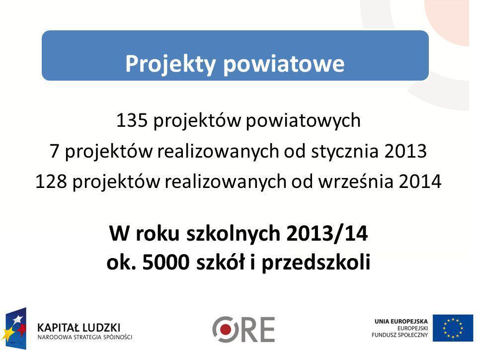 Projekty powiatowe 135 projektów powiatowych 7 projektów realizowanych od stycznia 2013 128 projektów realizowanych od września 2014 W roku szkolnych