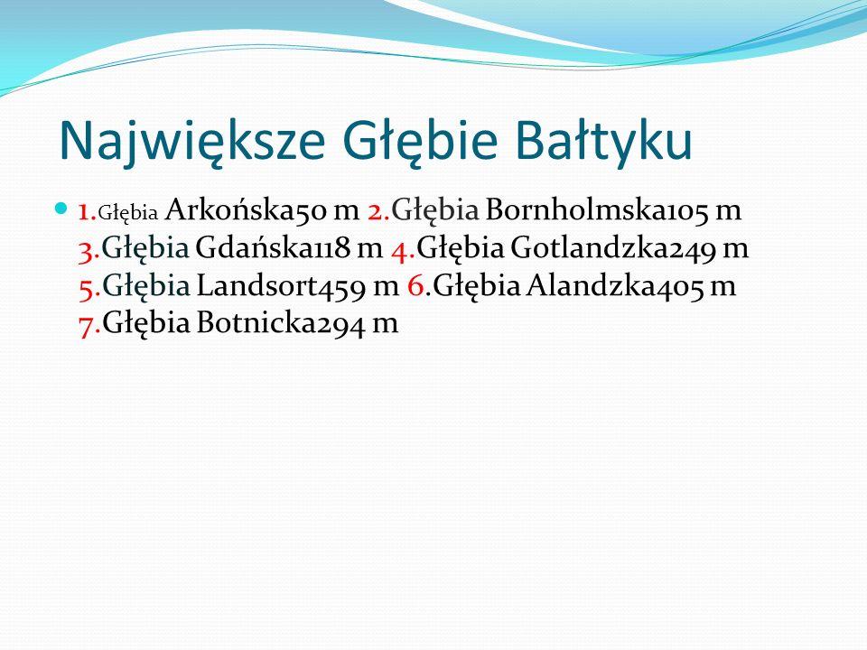 Największe Głębie Bałtyku 1. Głębia Arkońska50 m 2.Głębia Bornholmska105 m 3.Głębia Gdańska118 m 4.Głębia Gotlandzka249 m 5.Głębia Landsort459 m 6.Głę